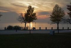 Herbstliche Abendstimmung an der Uferpromenade von Friedrichshafen