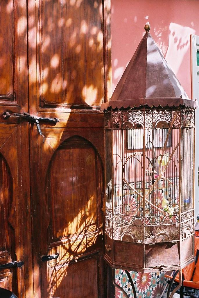 Moroccan Tatoo @ Hotel Gallia, Marrakech
