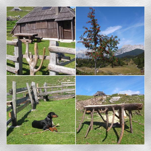 Slovenia山上小屋1-大
