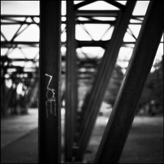 Islands Brygge #1 (Kodak Portra 160VC) (Kenneth McNeil) Tags: autumn 120 6x6 mediumformat copenhagen square denmark hasselblad squareformat medium format danmark kbenhavn carlzeiss forside efterr hasselblad500c planar80mm carlzeissplanar80mmf28 kennethmcneil