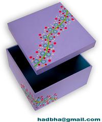 Boxes (Minhas Crias) Tags: