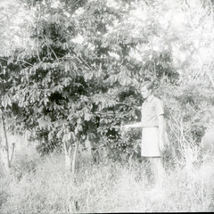 Hugo Curran beside a Capparis shrub near Palu