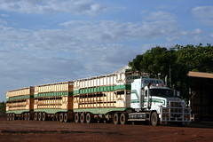 Curley Cattle Transport Mack Prime Mover 02-CCT + 3 trailers for cartage of cattle in a yard in Burke Development Road, Normanton, Queensland, Australia. (express000) Tags: truck australia queensland mack roadtrain lorries semitrailer queenslandaustralia australiantrucks cattletransport roadtrainsdownunder trucksinaustralia mackroadtrain normantonqueensland burkedevelopmentroadnormantonqueensland macksemitrailer macksemitrailerwith3trailers normantonqueenslandaustralia curleytransport worldtruck