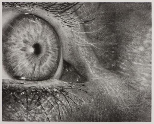 Cindy Wright, Les yeux de ma mere, 2009