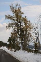 Naturpark Almenland_31 (Klima- und Energie-Modellregionen) Tags: klimafreundlicher naturpark almenland