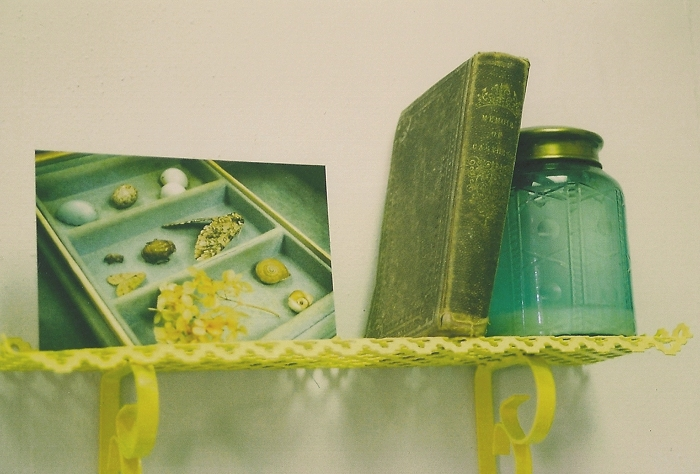 yellow & blue shelf.