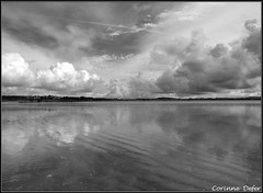 """plage bretonne"" - Finistre (Corinne DEFER - DoubleCo) Tags: travel sea sky blackandwhite bw mer france blancoynegro nature contrast landscapes brittany noiretblanc bretagne nb ciel contraste nuage nuages paysage plage paesaggi paysages paisagens landschaften finistre mare  corinnedefer updatecollection"