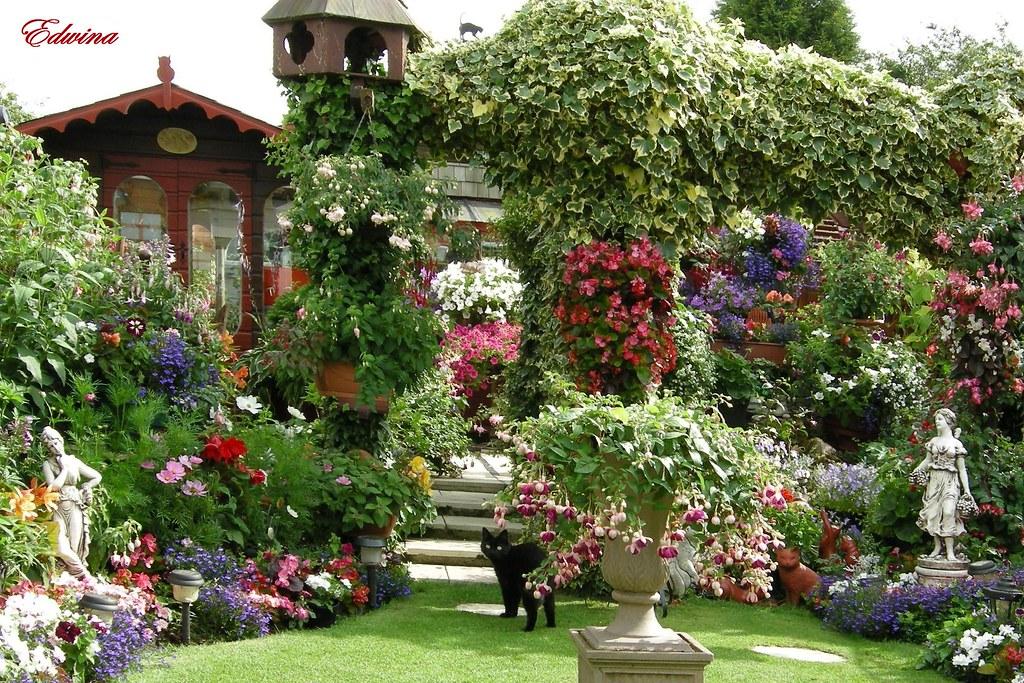 Прекрасный сад и огород своими руками