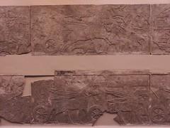 BM_ANE220 (sipazigaltumu) Tags: london museum ancient near antique east bm british mesopotamia basrelief reliefs assyrian antiquit ashurnasirpal antiquite ashurbanipal assurbanipal orthostat assurnasirpal orthostate tiglathpilesar tiglatpilesar tiglatpileser