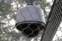 Security (PKAGAN) Tags: camera security nationalzoo canoneos350d dczoo sigma70300mmdg