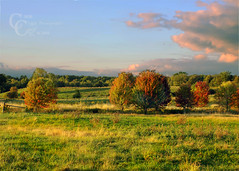 Fall Field (CampCrazy Photography) Tags: blue autumn trees sunset red sky ontario canada green fall field grass clouds forest fence landscape outdoors bush seasons farmland september hills pasture valley change serene milton acres halton campcrazyphotography serenalivingston