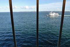 Cruising Öresund (Håkan Dahlström) Tags: sea water ferry denmark ace link danmark lappen dinamarca danemark öresund danimarca regionhovedstaden resund
