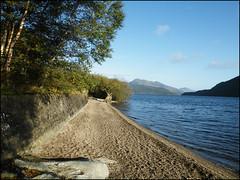 Firkin point Loch Lomond (Ben.Allison36) Tags: park uk tree landscape scotland argyll scenic roots national finepix loch lomond trossachs waterscape bute s8100fd