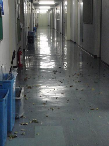 Pasillo tras el tifón