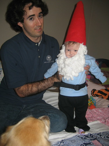 Baby Travelocity Gnome Occasions And Holidays