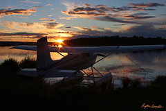 Cessna 180 (Champion Air Photos) Tags: aviation 180 seaplane cessna floatplane lakehood skywagon