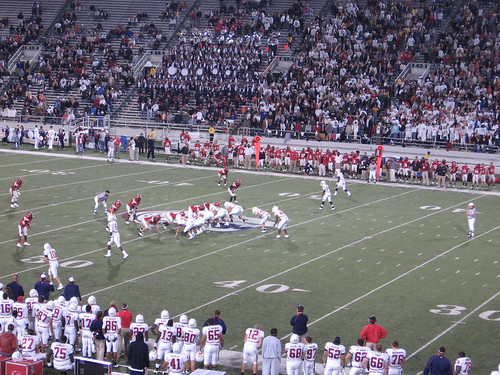 South Alabama showing the Wild Jag formation
