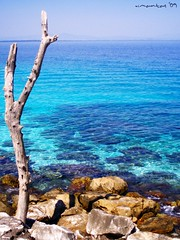 Vathi/Thasos (Vasilis Mantas) Tags: blue sea summer beach rock island rocks cyan olympus greece macedonia vathi mantas thassos thasos  makedonia explored      700    vmantas  vmantasphotography