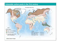 Vulnerable Carbon Pools