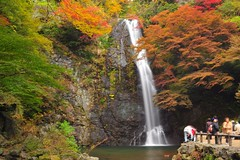 (Jennifer ) Tags: autumn red green fall nature colors yellow japan zeiss temple kyoto carl     carlzeiss zf oohara  nikond700   distagont2821  zeisscontest2010