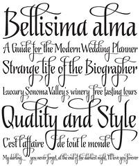 Biographer (Ale Paul) Tags: font type lettering elegant specimen sudtipos alepaul koziupa