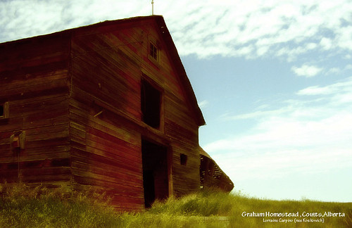 Old Barn Galts Farm, Southern Alberta
