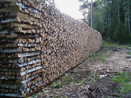 Dad's logs