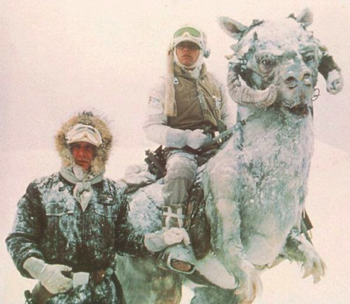 I couldnt, in good conscience, use a photo of a hobo, so heres one of a tauntaun.