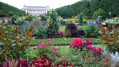 Le Jardin des Plantes. Photo : JasonW