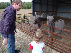 Dad & Lilliann Looking At Donkeys