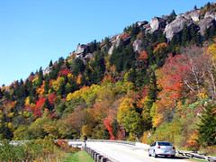 Fall at Linn Cove (BlueRidgeKitties) Tags: autumn red orange green fall landscape october fallcolor northcarolina blueridgeparkway appalachianmountains grandfathermountain westernnorthcarolina linncoveviaduct southernappalachians ccbyncsa linvilleviaduct yonahlosseeoverlook canonpowershotsx10is