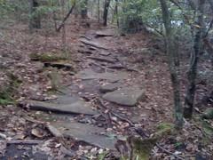Cherokee Trail 5
