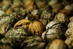 (ion-bogdan dumitrescu) Tags: food walnut nuts walnuts nut wallnut wallnuts bitzi mg0765 ibdp ibdpro wwwibdpro ionbogdandumitrescuphotography