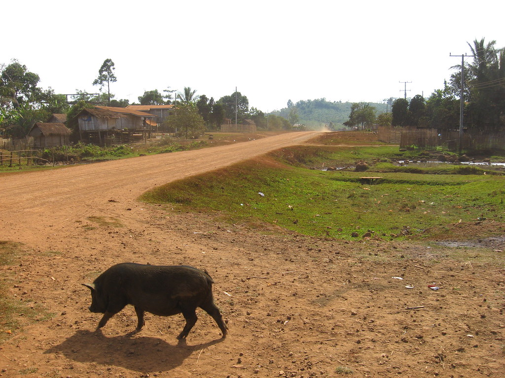 The road to Sekong, Bolaven Plateau