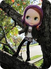 Tree Climbin' Chuck 9/365