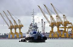 Porto de Suape (Shigow) Tags: port nikon mine harbour crane victor porto tugboat recife nikkor 18200 pernambuco seaport guindaste d300 suape rebocador shigueru shigow