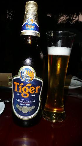 Tiger - Thailand