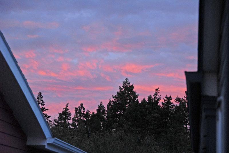 Sunrise 25 Nov 03