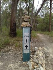 Wiry Panic Trail