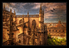 Sitting On Top Of The World. (Andy Bracey -) Tags: texture birds skyline inflight spain rooftops cathedral courtyard seville hdr bracey sevillecathedral sittingontopoftheworld singleraw andybracey magicunicornverybest