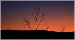 Sierra del Brezo. (Miguel. (respenda)) Tags: puestadesol palencia sierradelbrezo respendadelapea