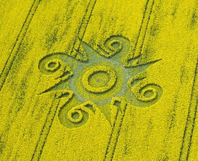 Crop Circles Roundway Hill (2), nr Devizes, Wiltshire_ Reported 10th May 2009