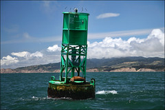 Duxbury Buoy & Sleeping Sea Lion (LifeLover4) Tags: sf california canon bay boat interestingness interesting fishing salmon bolinas explore pacificocean sealion buoy arima circularpolarizer pointreyesnationalseashore explored 550d buoyant efs1755mmf28isusm t2i 1dr lifelover4 stickneydesign