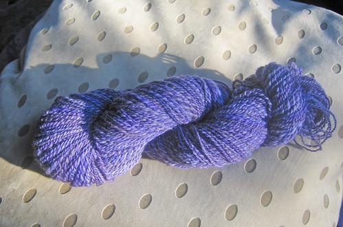 Irises Yarn 1