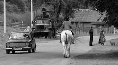 Traffic in Us-Chorna (MyBukit) Tags: horse car rural village traffic ukraine easteurope doprava ukrajina vesnice karpaty hucul carpathy zakarpattia ustcorna zakarpat uschorna