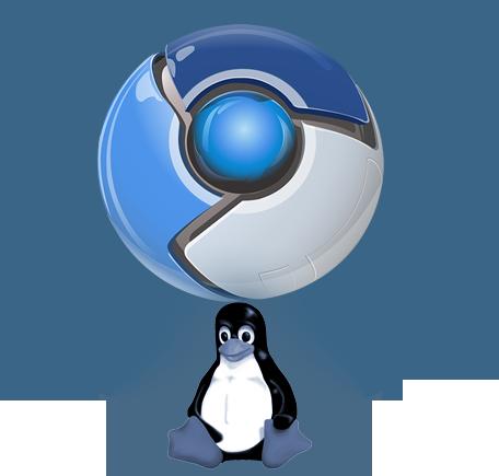 Install Chromium & Extensions / Plugins In Ubuntu Linux