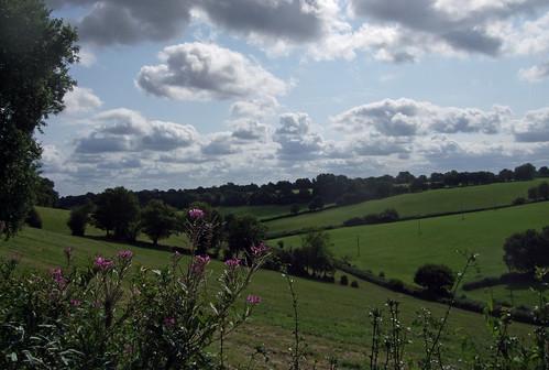 chartridge