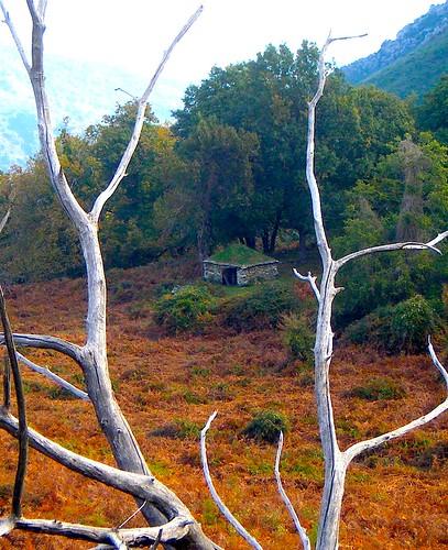 pétra ronda au milieu de l'automne
