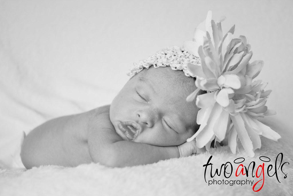 Two Angels Photography ~ Brighton Michigan newborn, infant