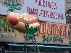 DSCF9613 (Gordon Gattsek) Tags: new york hotdog eating 4thofjuly dickzigun nycbrooklyn denoswonderwheel astrolandpark coneyislandusa dreamlandpark cipbc coneyislandpolarbearclub photosbygordongattsek charlesdenson coneyislandhistoryproject georgeshea maneatsdog nathansfamoushotdogsconeyisland louisscarcella